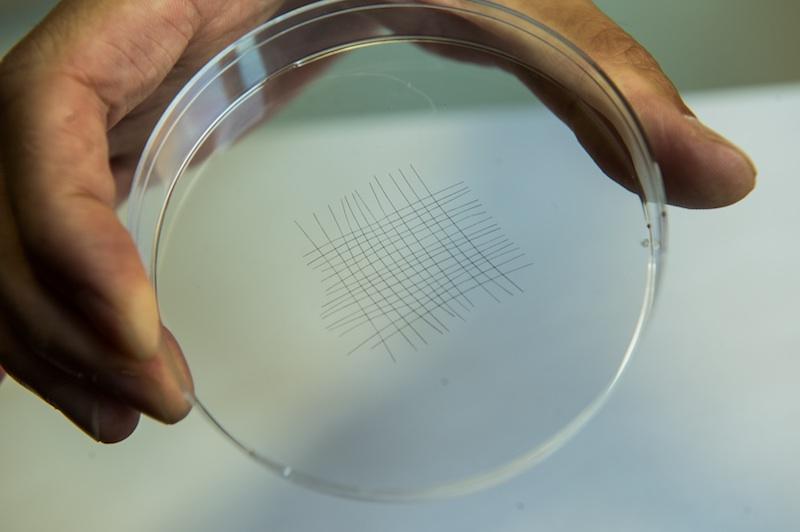 Teknologi Antena Serat Nanotube