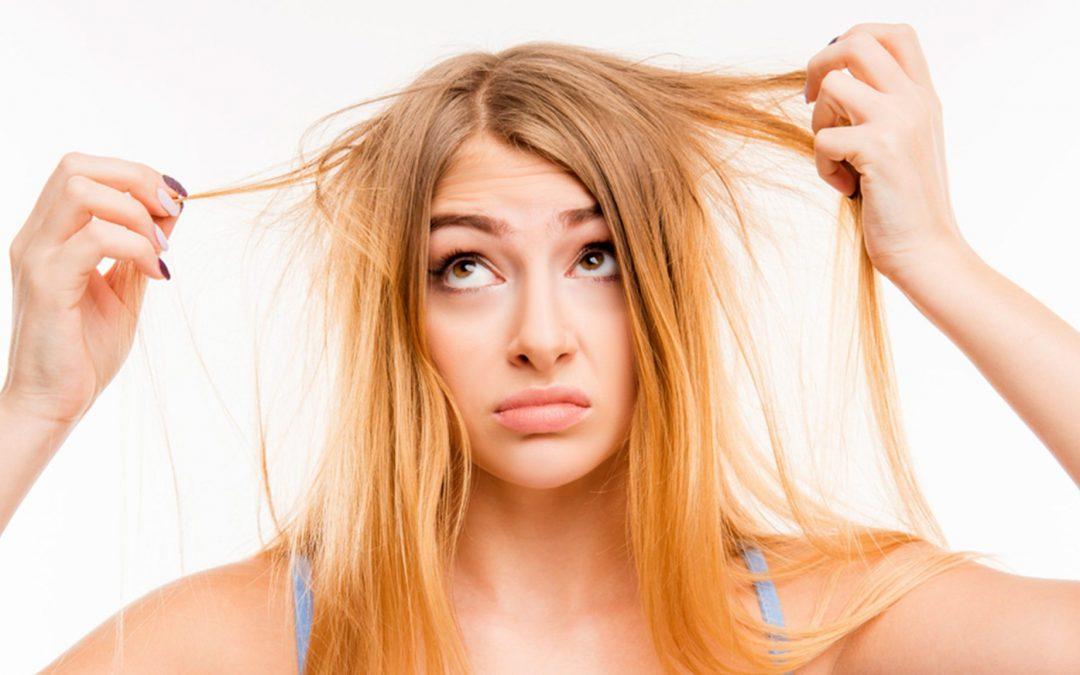 Hair Tonik dari Teripang dan Kulit Udang