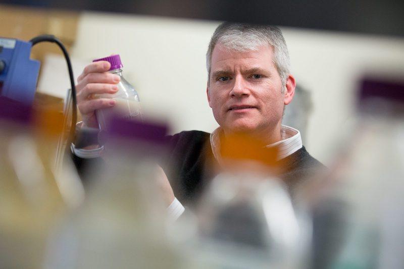 Biomaterial Baru untuk Kurangi Polusi