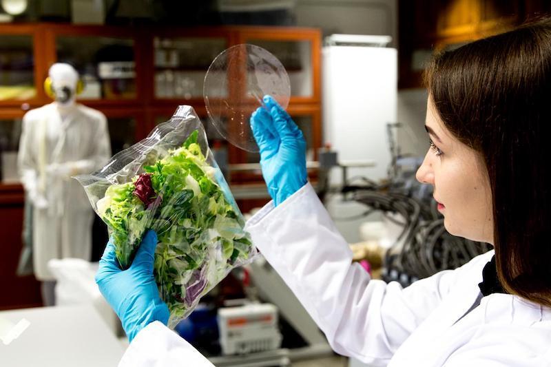 Inovasi Kemasan Agar Makanan Tetap Sehat