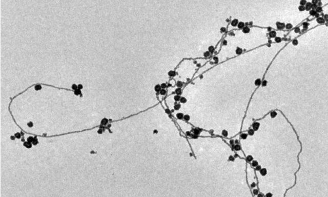 Inovasi Menciptakan Nanopartikel Emas Dalam Air