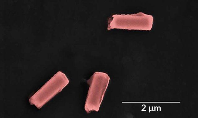 Membersihkan Bakteri dan Racun Dalam Darah Dengan Robot-Nano