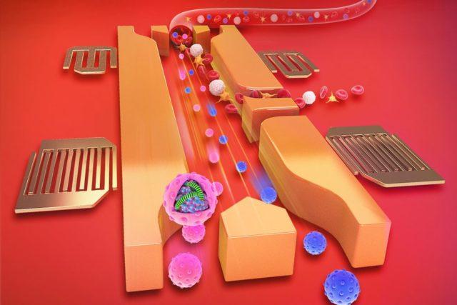 Gelombang Suara Memungkinkan Analisis Sampel Darah Dalam Hitungan Menit