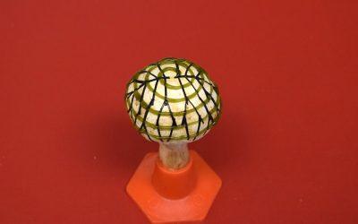 Menghasilkan Listrik dari Jamur Bionik