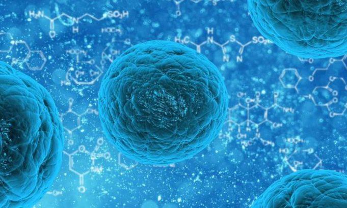 Molekul Gula Menjadi Penguhubung Komunikasi Antar Seluler