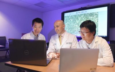 Pengembangan Serat OLED Menjadi Pakaian Rajutan