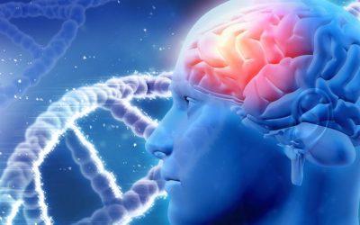 Neurotransmitter Pendeteksi Dini Parkinson dan Kanker