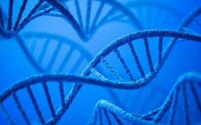 TrAPs, Molekul Baru Untuk Penyembuhan Luka
