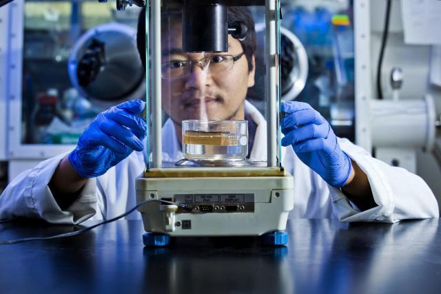 Pori Mikroskopik Untuk Proses Pemurnian Air Tawar