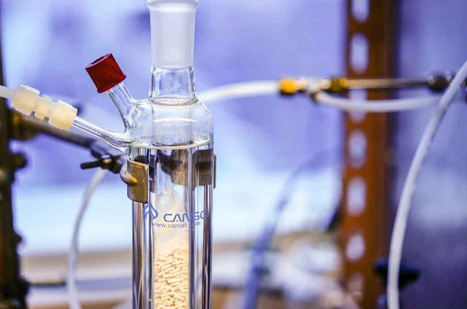 Menangkap dan Mengubah CO2 Menjadi Materi Organik Bermanfaat