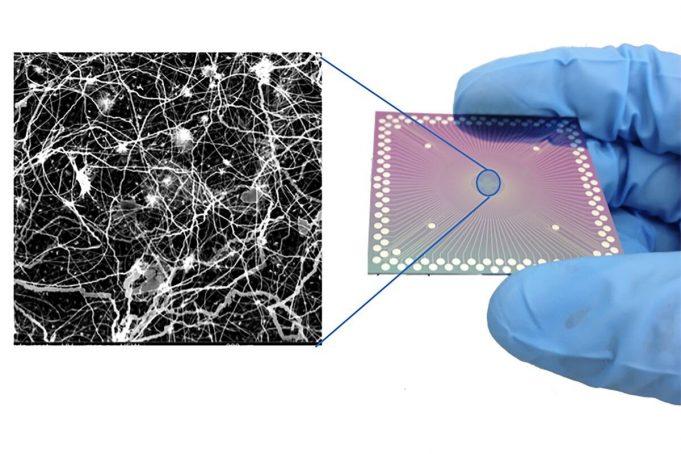 Pengembangan Perangkat Kecil Menyerupai Perilaku Otak