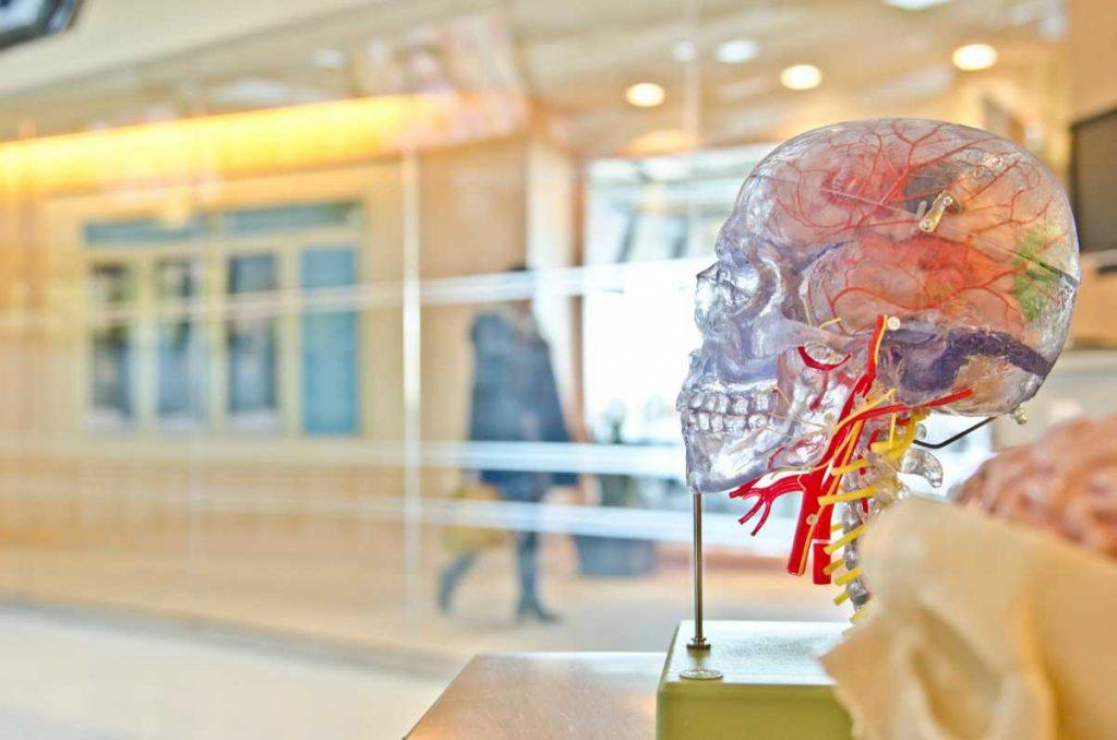 Teknologi Implan Otak untuk Kembalikan Gerak dan Indra Peraba Penyandang Lumpuh